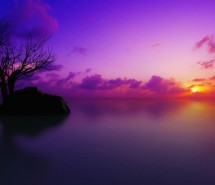 超唯美的紫色风景 紫色唯美图片大全