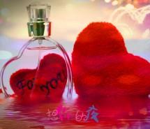 当爱情归于平淡 唯美爱情文字