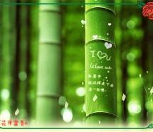 小清新图片 把季节写成美的绿色